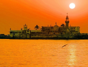 Экскурсии в Индию